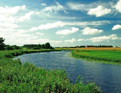 Mecklenburg-Vorpommerns Amazonien