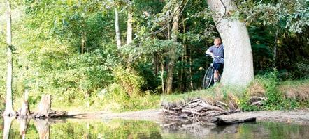 Unterwegs im Naturpark Nossentiner/Schwinzer Heide. Seine Fläche beträgt 365 Quadratkilometer, knapp zwei Drittel davon bestehen aus Wald.